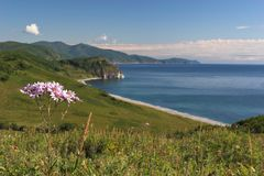 Pacific coast. Near Vladivostok, Russia, Far-East. Autumn stock image