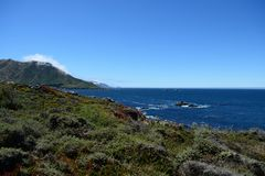 Pacific Coast along the California State Route One, CA, USA. Pacific Coast along the California State Route One, California, USA stock photos