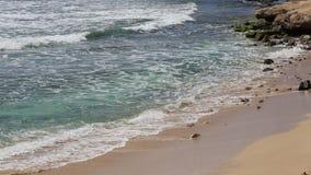 Pacific coast. Beach on Pacific -  Oahu, Hawaii stock footage