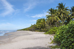 Pacific Coast of Costa Rica Royalty Free Stock Images