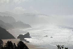 Pacific Coast Environment Royalty Free Stock Photo