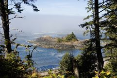 Pacific coast fog. Fog from the open ocean is blown on the beaches and into the woods of vancouver island. This fog is the base of the boreal rain forest Royalty Free Stock Photo