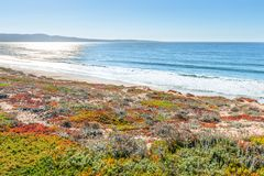 Pacific coast. California royalty free stock photography