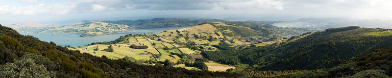 Pacific coast and Otago peninsula, New Zealand Stock Photography