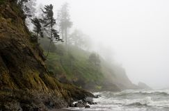 Pacific Coast Rugged Shoreline Rocky Fog Stock Image