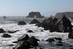 Pacific Coast, Sonoma County, California Royalty Free Stock Images