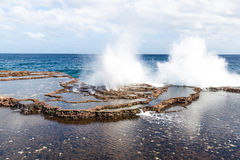 Pacific coast with terraces and blowholes Stock Images