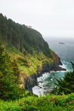 The Pacific coast. USA. Oregon. Fog Royalty Free Stock Image