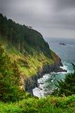 The Pacific coast. USA. Oregon. storm Stock Photos
