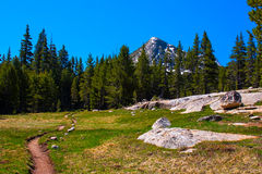 Pacific Crest Trail along Lyell fork of Tuolumne river, Yosemite Royalty Free Stock Images