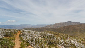 Pacific Crest Trail in Anza-Borrego Desert stock images