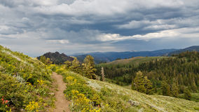 Pacific Crest Trail. In Northern California, USA Royalty Free Stock Photography