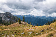 Pacific Crest Trail, Washington State. Crest trail near Mt Rainier and Chinook Pass stock photos