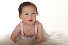 Pacific Islander baby girl learning to crawl Stock Photo