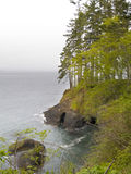 Pacific Northwest Beach Royalty Free Stock Photos