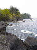 Pacific Northwest Beach Stock Photography