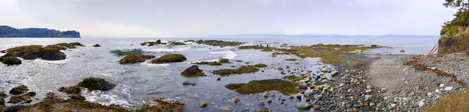 Pacific Northwest Beach Panoramic Royalty Free Stock Image