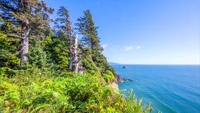 Pacific Northwest Coast, USA - the winding US route 101 along the misty Oregon coastline near Yachats.  stock images