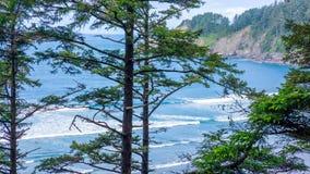 Pacific Northwest Coast, USA - the winding US route 101 along the misty Oregon coastline near Yachats.  stock image