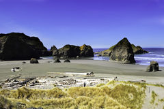Pacific northwest coastline Royalty Free Stock Image