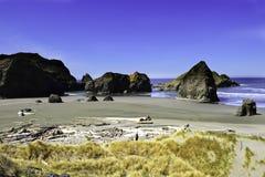 Pacific northwest coastline. Black sand beach on the pacific northwest coastline Royalty Free Stock Image