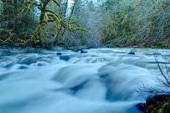 Pacific Northwest mountain river Royalty Free Stock Image