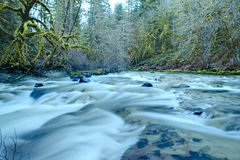 Pacific Northwest mountain river Stock Photos