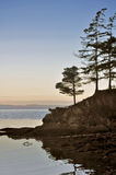 Pacific northwest ocean Stock Photography