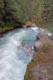 Pacific northwest river Stock Image