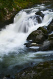 Pacific Northwest Waterfall Stock Image