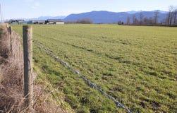 Pacific Northwest Winter Farmland Royalty Free Stock Photo