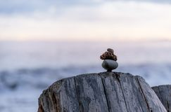 Pacific Northwest Zen. Balance and wellness concept. Close-up of ocean stones balanced on rocks and ocean driftwood. Low depth of field. Zen and spa inspired stock photo