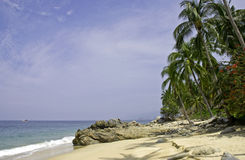 Pacific Ocean beach and palm trees. South of Puerta Vallarta, Mexico Royalty Free Stock Image