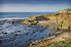 Pacific Ocean Coast, California Royalty Free Stock Photos