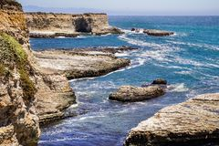 Pacific Ocean Coast Harbor seals resting on rocks, Wilder Ranch State Park, California royalty free stock photos