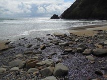 Pacific Ocean coastal beach Indian Point Ecola State Park Oregon Royalty Free Stock Photos