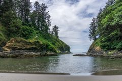 Free Pacific Ocean Cove With Tall Trees On The Cliff. Stock Images - 100884534