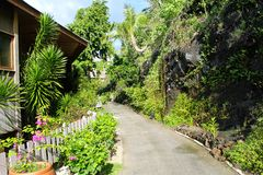 Pacific ocean nature, Borabora island, French Polynesia. Garden view stock images
