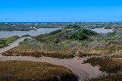 Pacific Ocean and the Samoa Dunes Stock Image