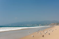 Pacific Ocean in Santa-Monica Royalty Free Stock Image