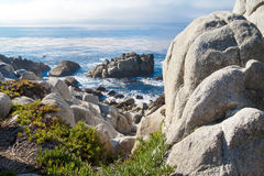 Pacific Ocean shoreline with rocks and shrubs. Beautifu Pacific Ocean seascape with rocks Royalty Free Stock Images