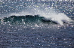 Pacific ocean wave crests and breaks Royalty Free Stock Photography