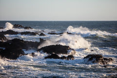 Pacific Ocean Waves and Rugged California Coastline. Waves from the Pacific Ocean crash against the rocky coast of northern California Royalty Free Stock Photos