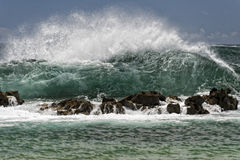 Pacific ocean waves on the shore Royalty Free Stock Photography