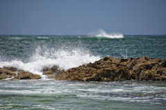 Pacific ocean waves on the shore Royalty Free Stock Photo