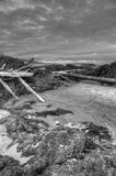 Pacific Rim National Park, Vancouver Island Royalty Free Stock Image