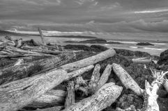 Pacific Rim National Park, Vancouver Island Royalty Free Stock Images