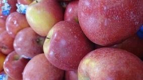 Pacific Rose Apple Stock Photos