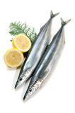 Pacific saury Stock Photo