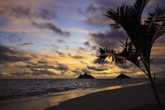 Pacific sunrise in Hawaii Royalty Free Stock Photography